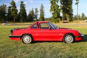 1986 Alfa Romeo Spider Alfa Romeo Quadrifoglio